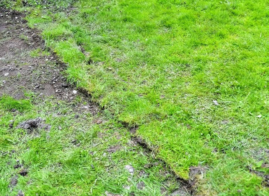 Ledningar under gräset