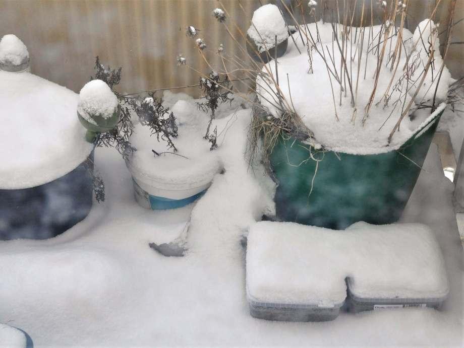 insnöade vintersåddlådor på balkongen