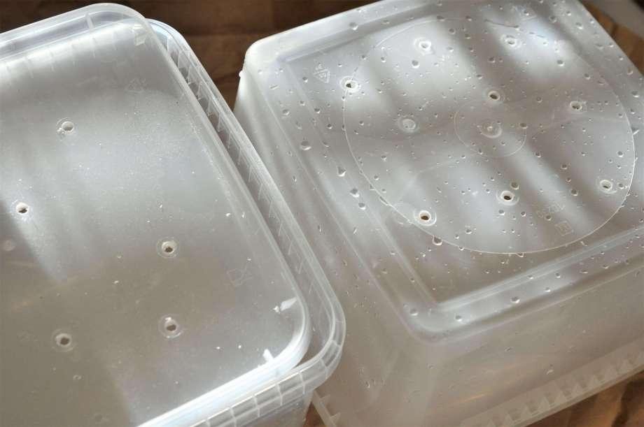 godislådor med borrade hål i botten och lock