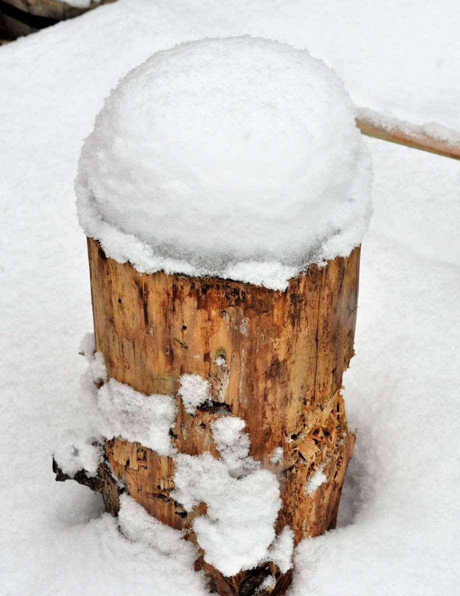 huggkubbe i snö