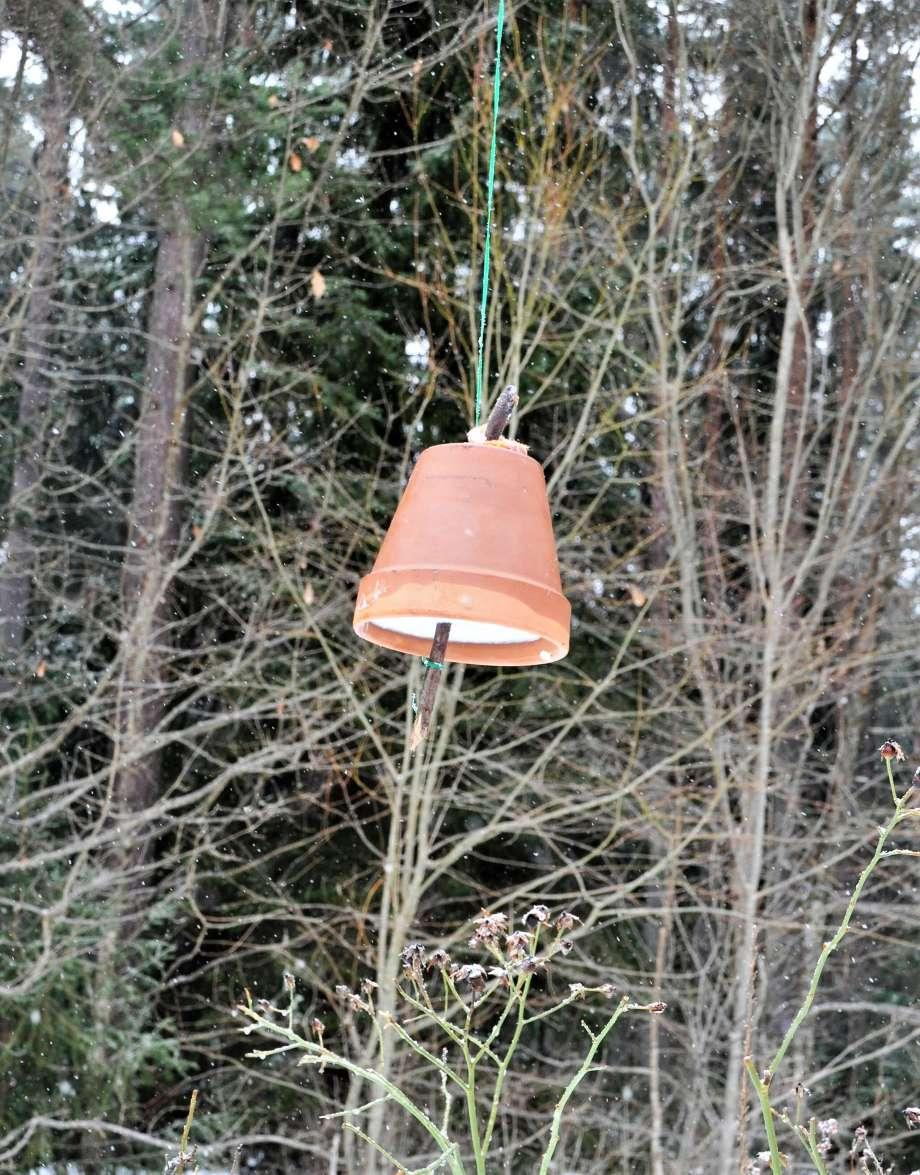 upphängd isterkruka med fågelmat