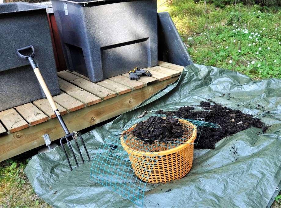 improviserad silning av kompost ner i en lövkorg med hjälp av grovmaskigt plastnät
