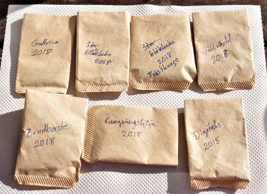 Sju hemgjorda fröpåsar med frön av ängsblommor: gullviva, stor blåklocka, prästkrage, fältvädd, brudborste, kungsängslilja och fingerborgsblomma.