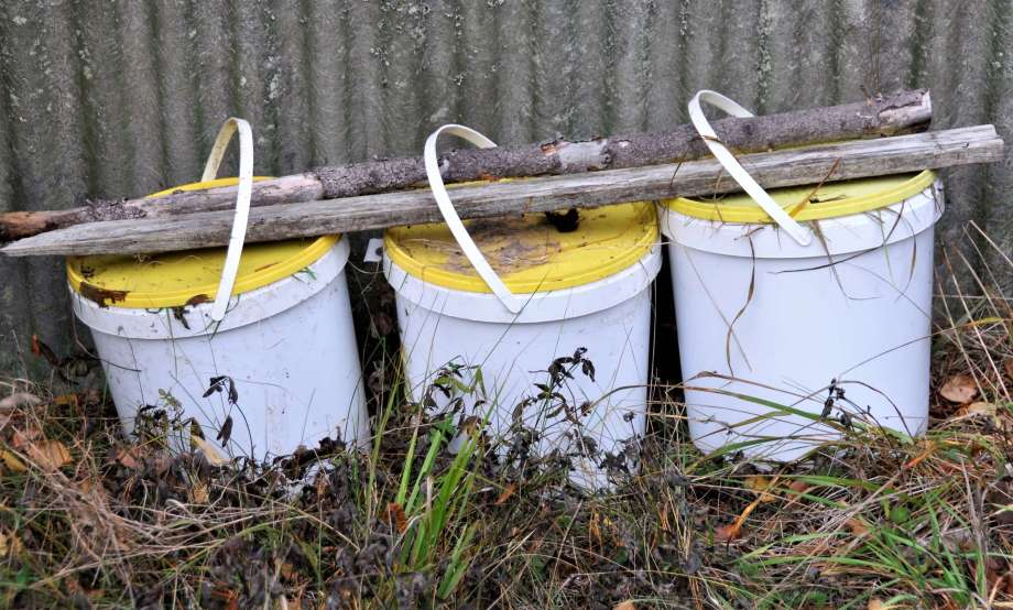 tre vita hinkar med gula lock ställda på rad med grenar lagda på locken för att hålla dem stängda