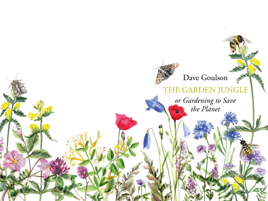 beautiful wrap-around cover of the next book, with painted illustrations of pollinators and meadow plants