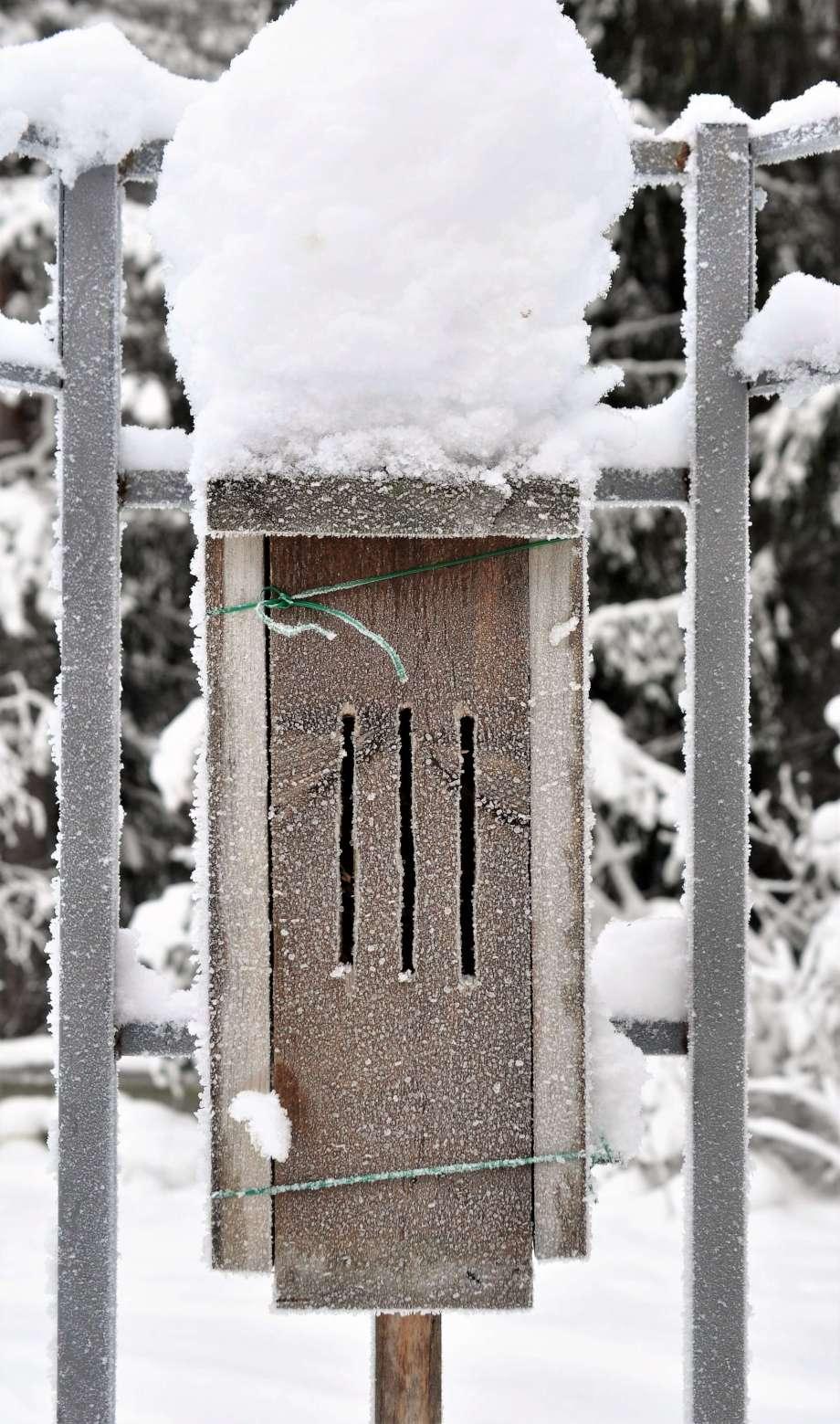 rustik fjärilsholk täckt av rimfrost och med snömössa