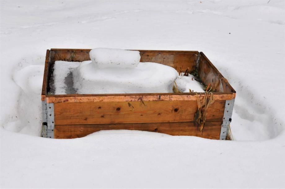 pallkrage omgiven av snö och fylld med snö och is