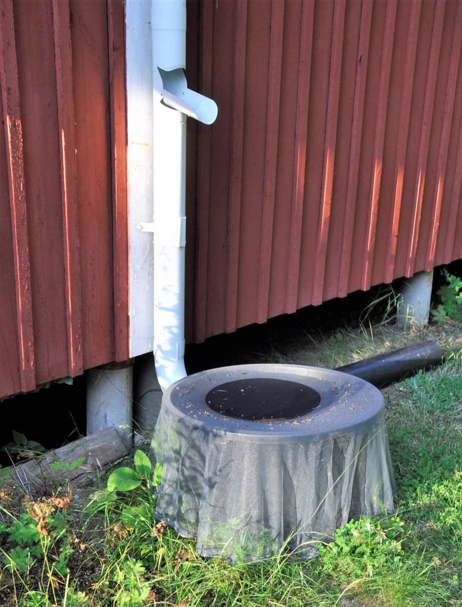 nedanför ett stuprör med utfälld vattenavkastade står en rund balja täckt med ett finmaskigt grått nät.