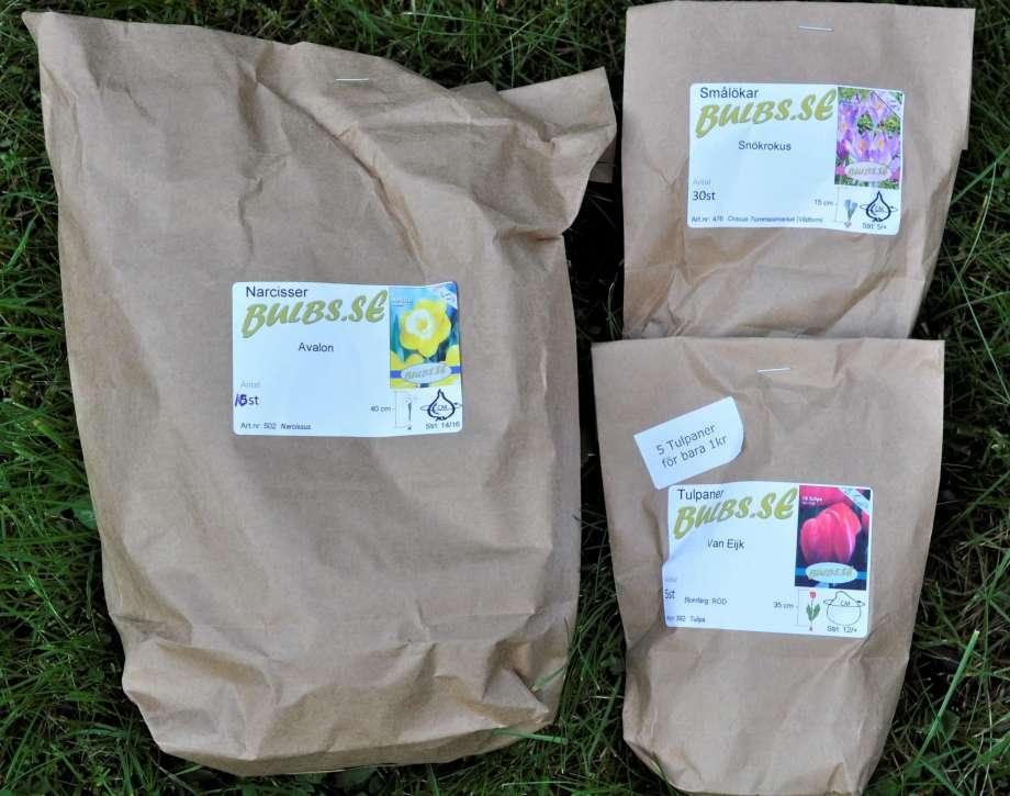 tre bruna papperspåsar med etiketter från bulbs.se, innehållande krokusar, tulpaner och påskliljor
