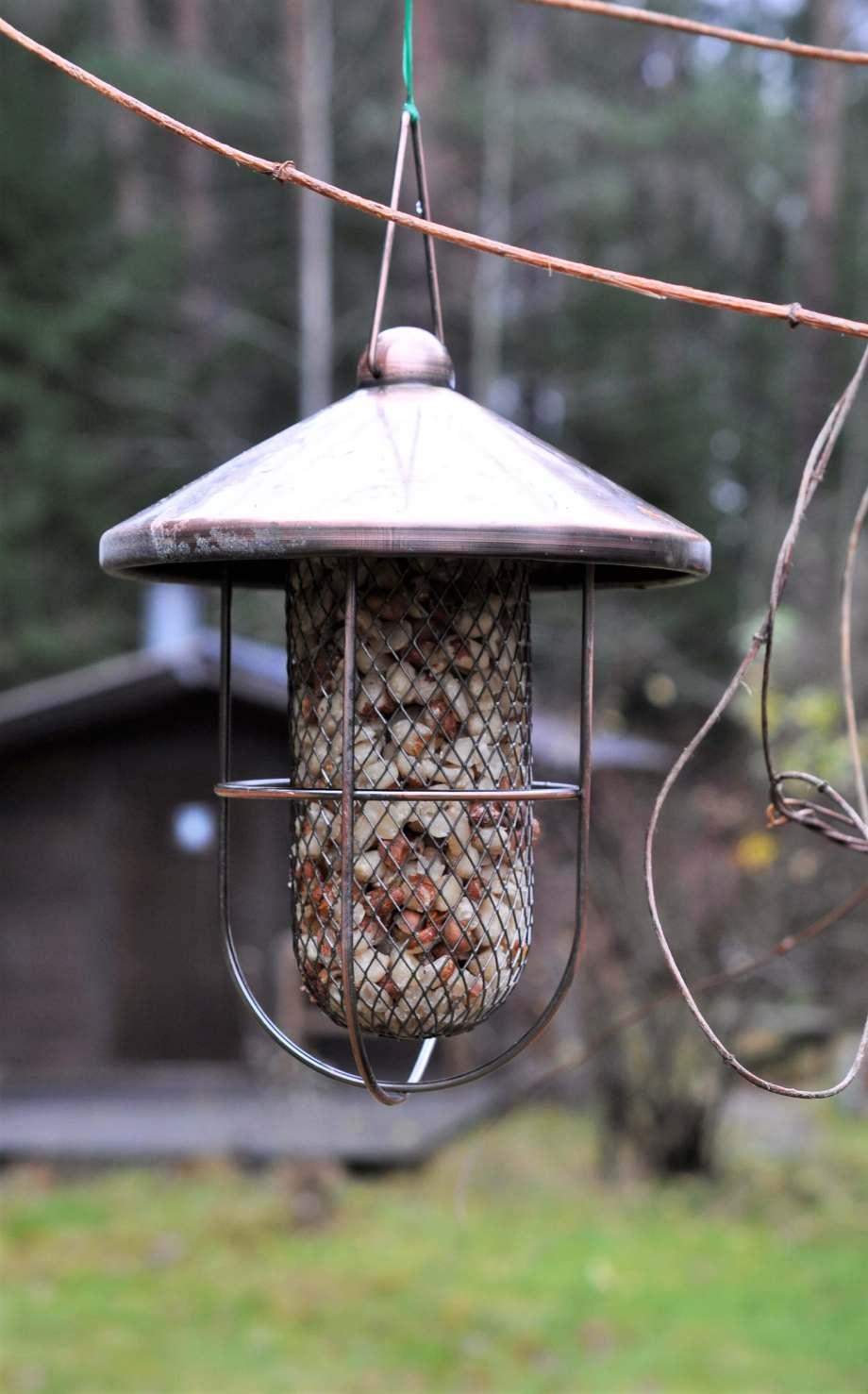en fågelmatare i mässing, fylld med jordnötter