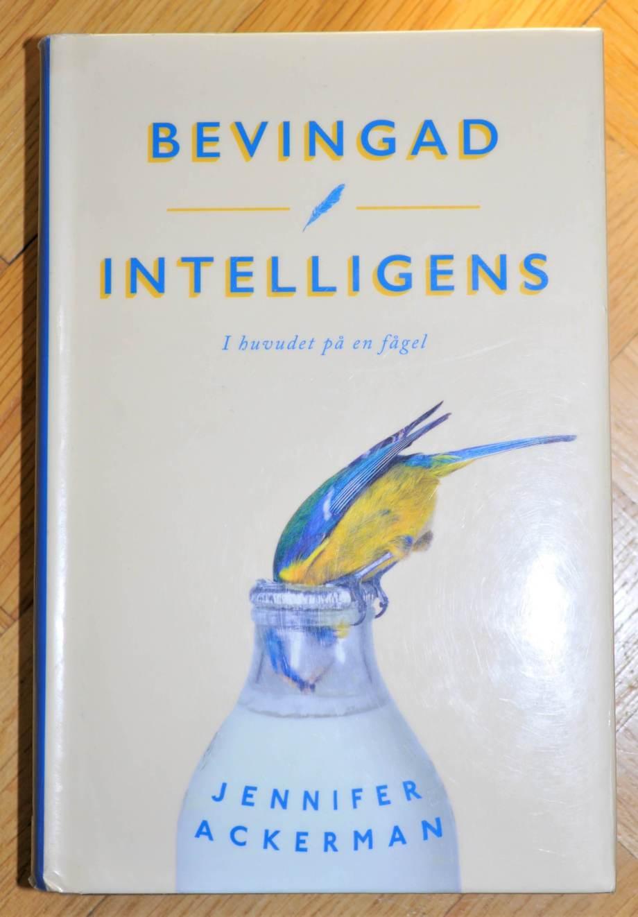 """bokomslag till """"Bevingad intelligens"""" av Jennifer Ackerman visar en blåmes som hackat sönder kapsylen till en mjölkflaska för att komma åt grädden i."""