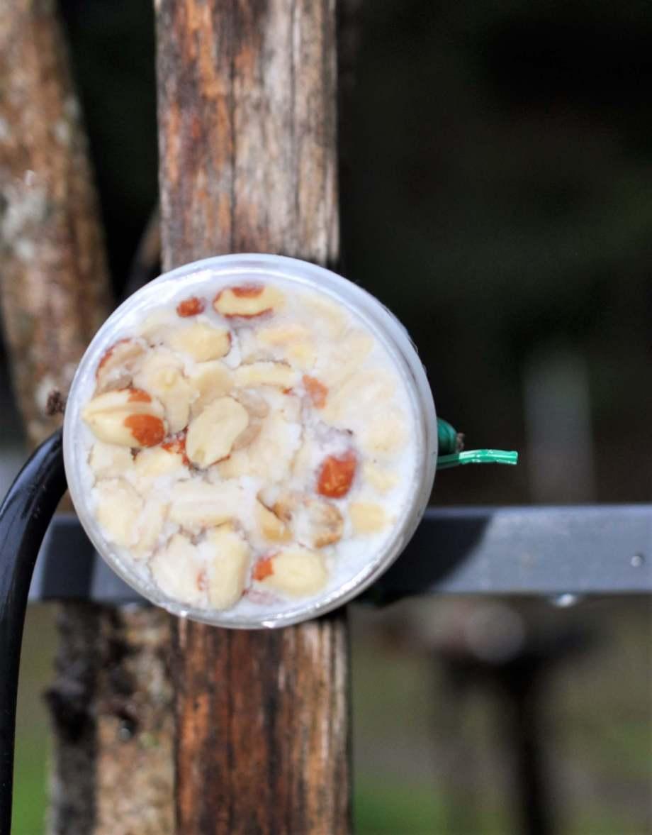bild framifrån av en plastburk fylld med jordnötter och ister, fastsatt på en påle