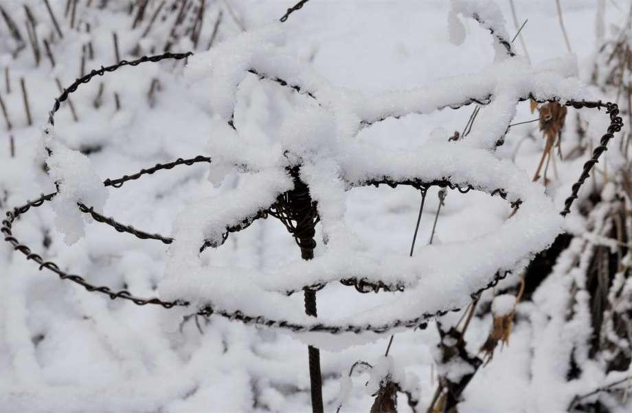 blomformat växtstöd av armeringsjärn och najtråd ser juligt ut när det är täckt av pudersnö
