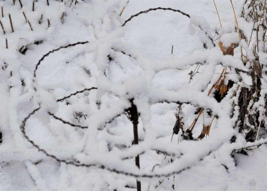 blomformat växtstöd av najtråd täckt av pudersnö