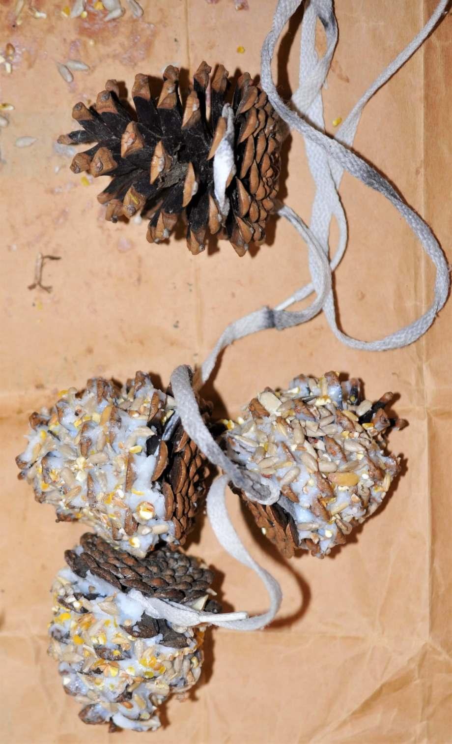 tre av kottarna i girlanden fyllda med ister och fågelfrön en kotte fortfarande utan fyllning