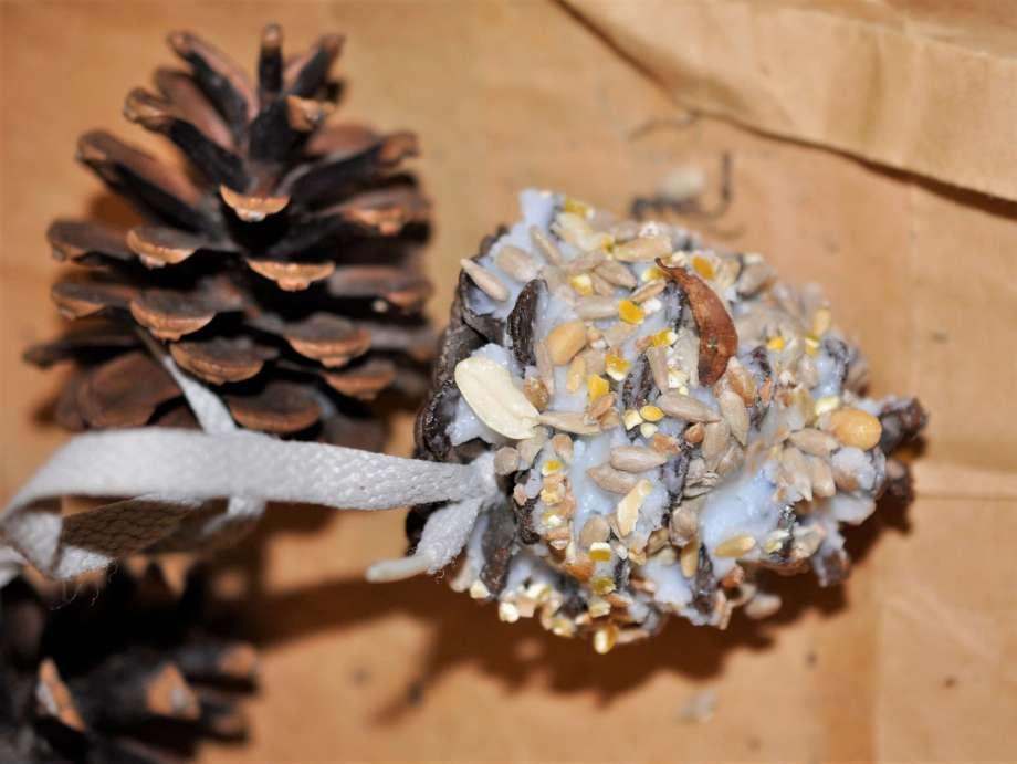 kotte fylld med ister och fågelfrön