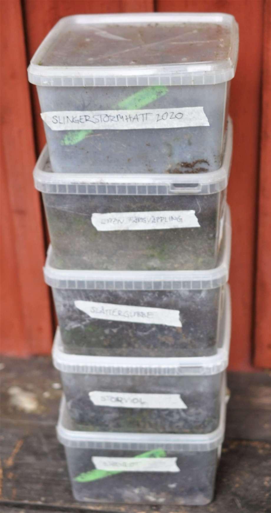 gamla godislådor av genomskinlig plast travade på varandra. Innehåller jord, frön och sticketiketter.