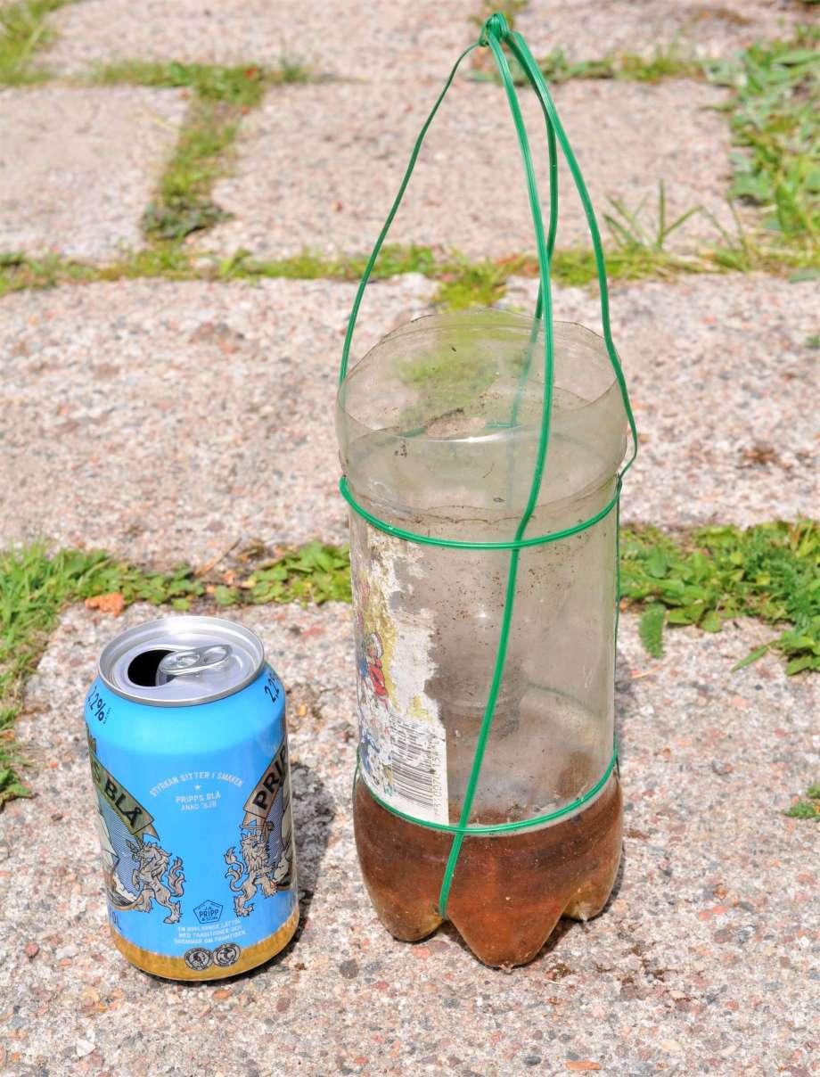 hemgjord getingfälla av en gammal petflaska med avskuren topp, upphängning av ståltråd. bredvid står en öppnad burk billig pripps blå öl. det finns också öl i fällan
